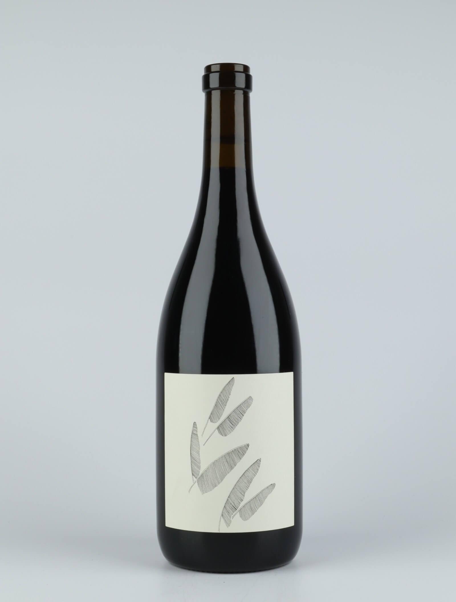 Zinfandel - Wirth Vineyard