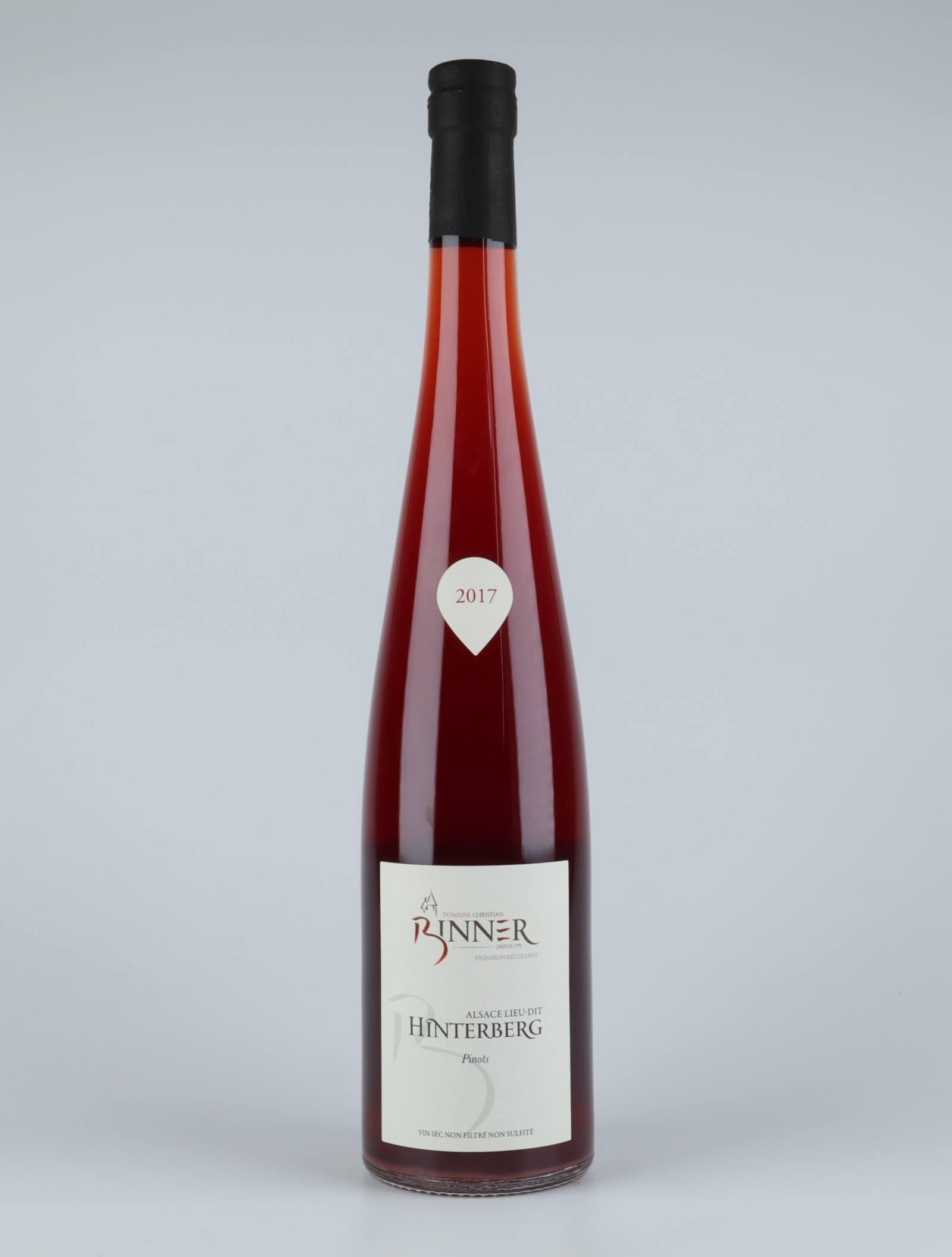Pinots - Hinterberg