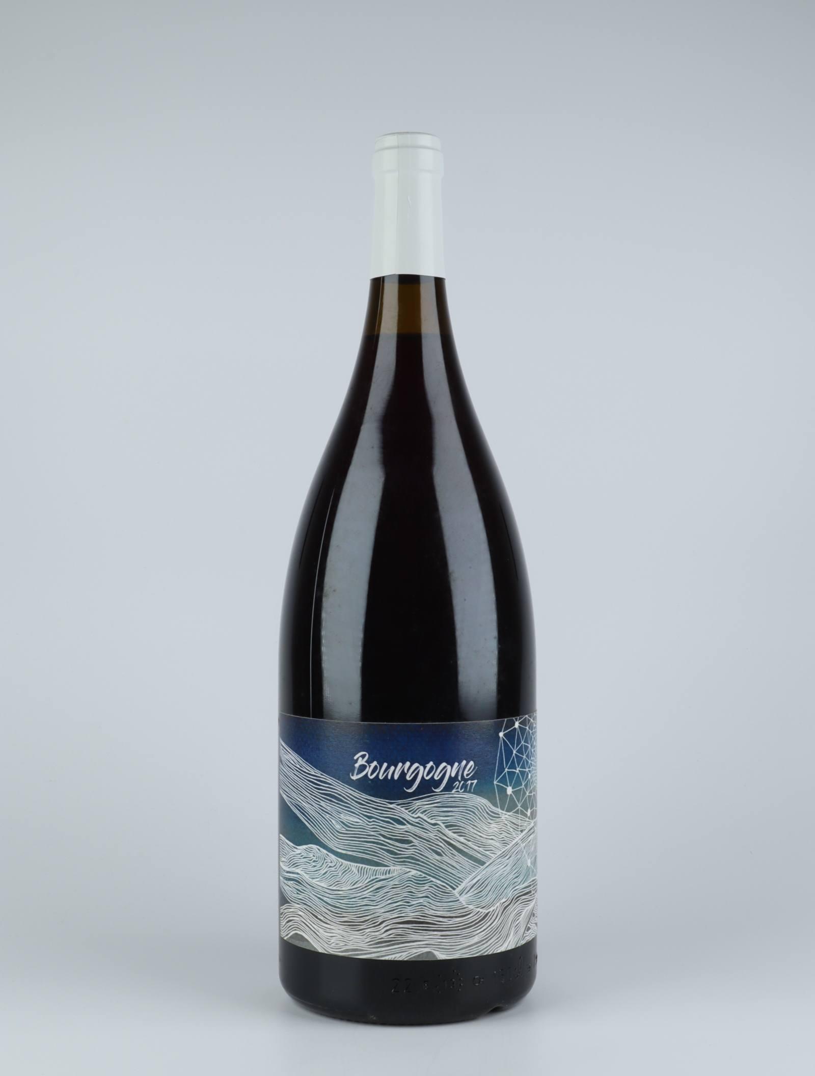 Bourgogne Rouge - Cuvée Longue