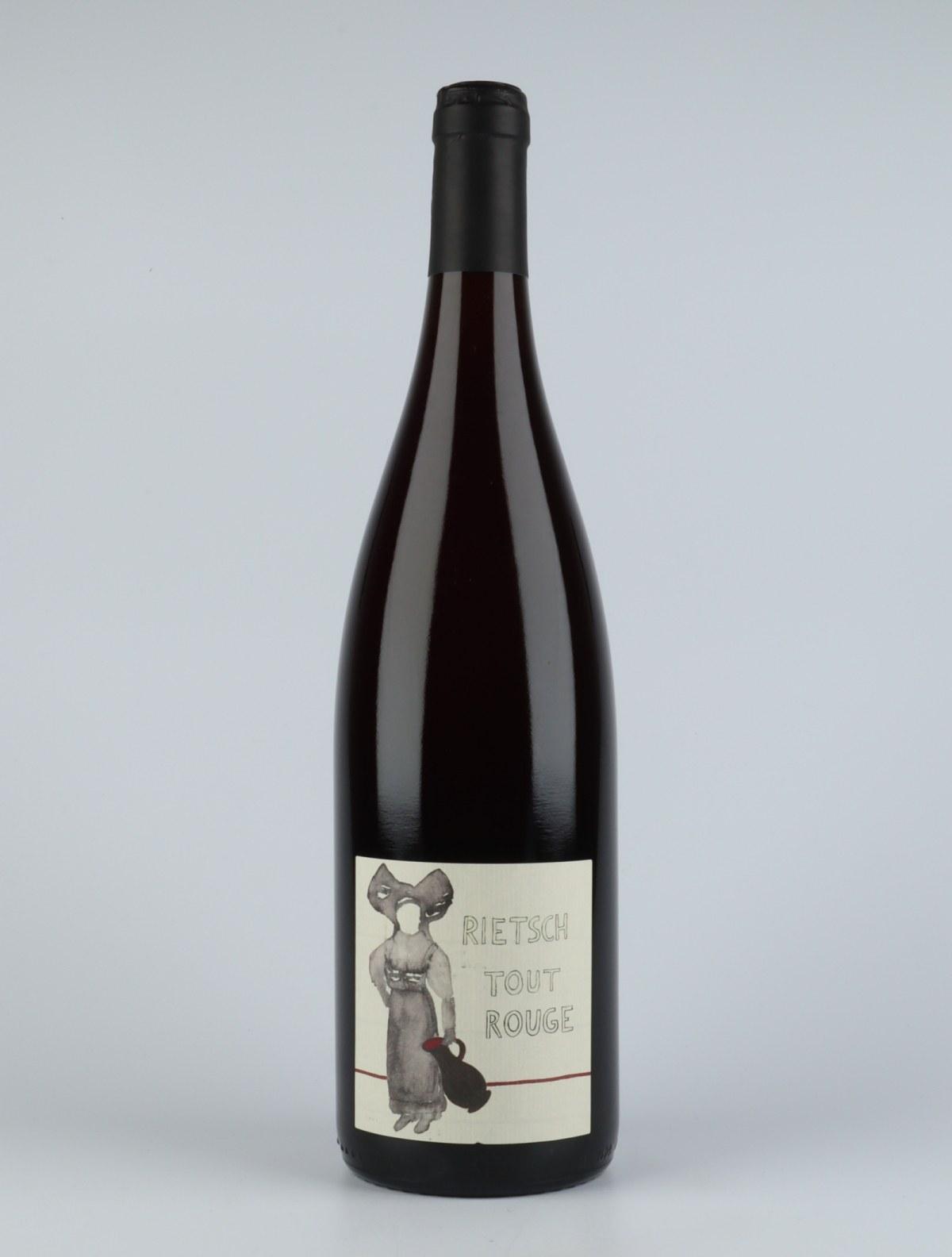 Pinot Noir - Rouge au Litre