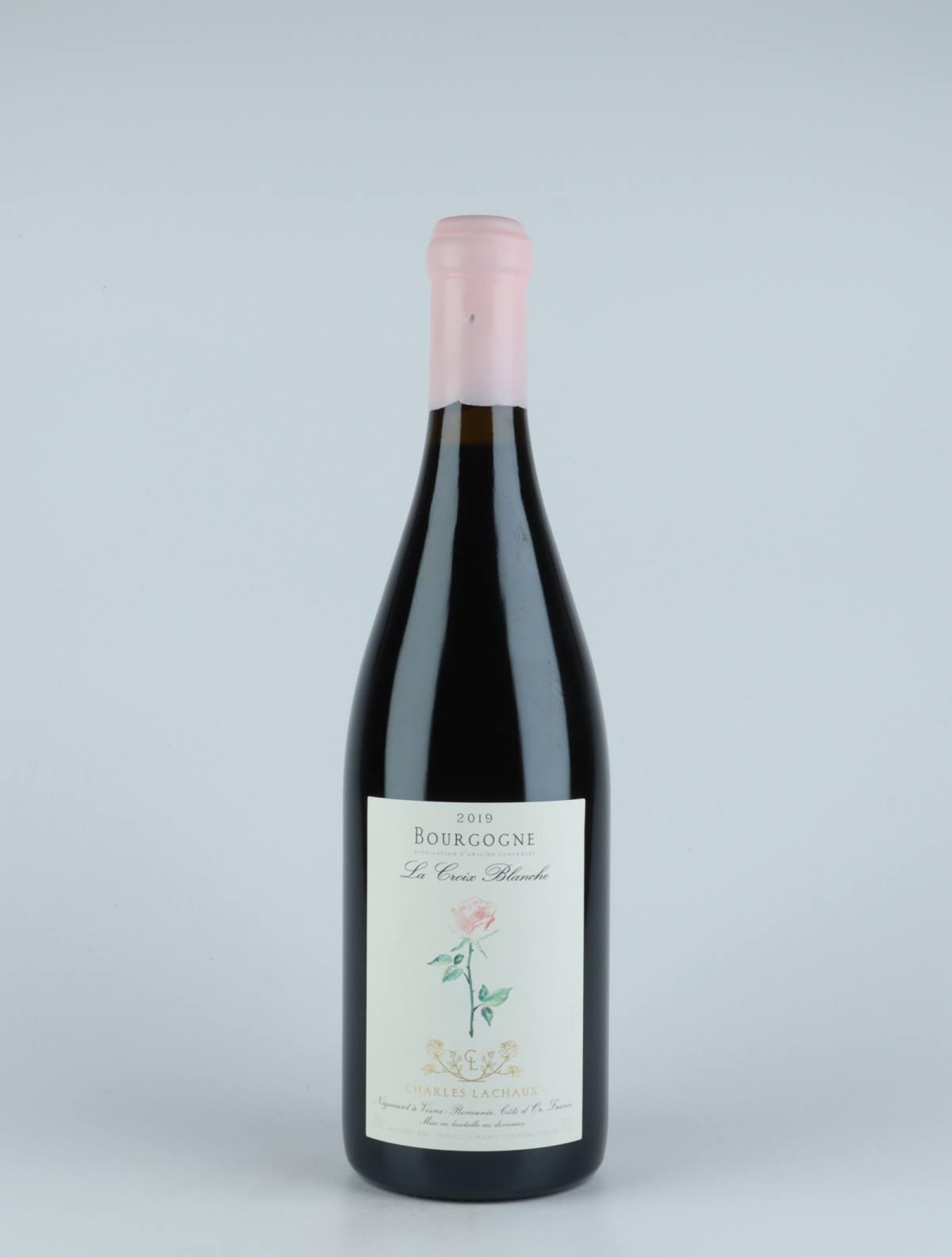 Bourgogne Rouge - La Croix Blanche