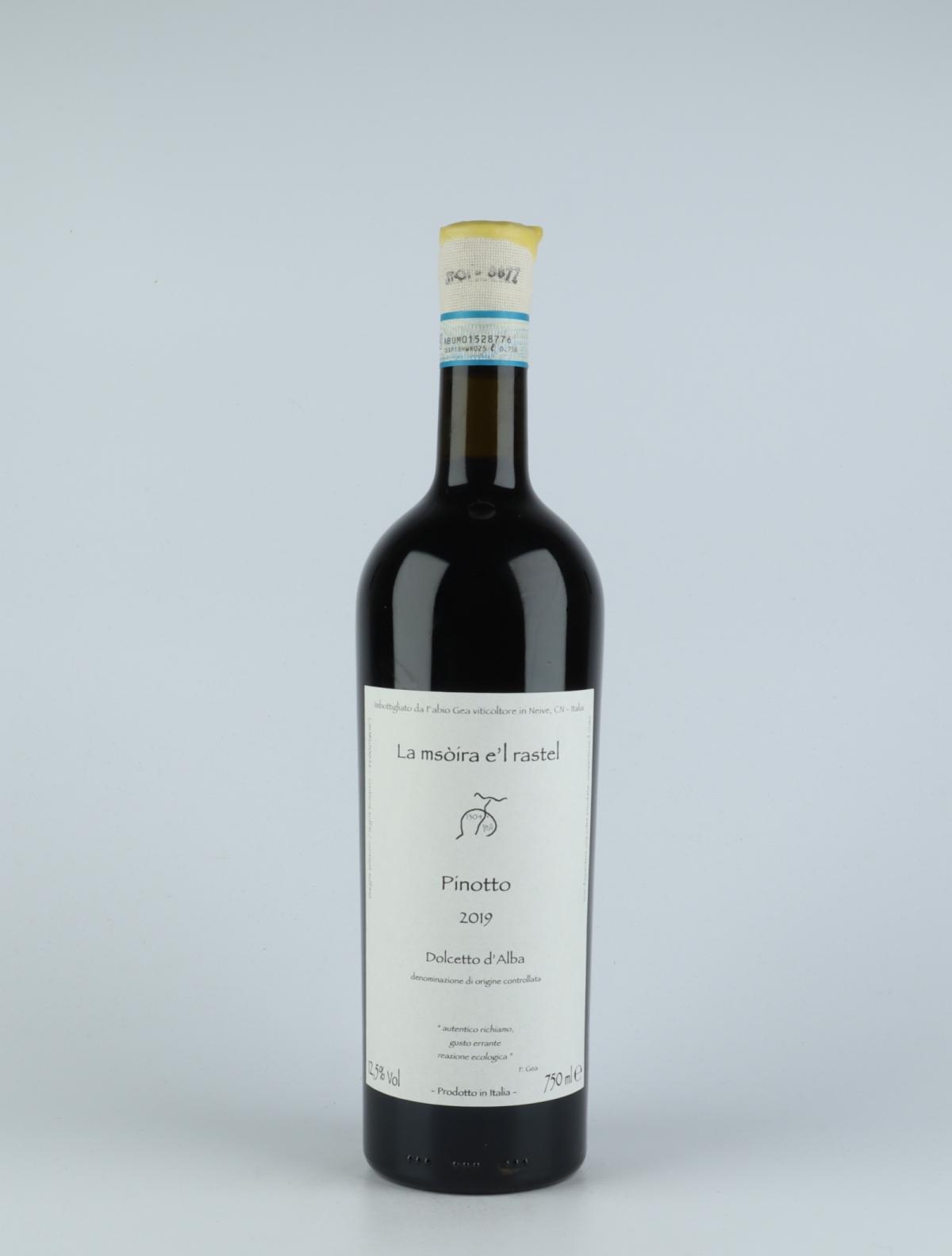 Pinotto - Dolcetto d'Alba
