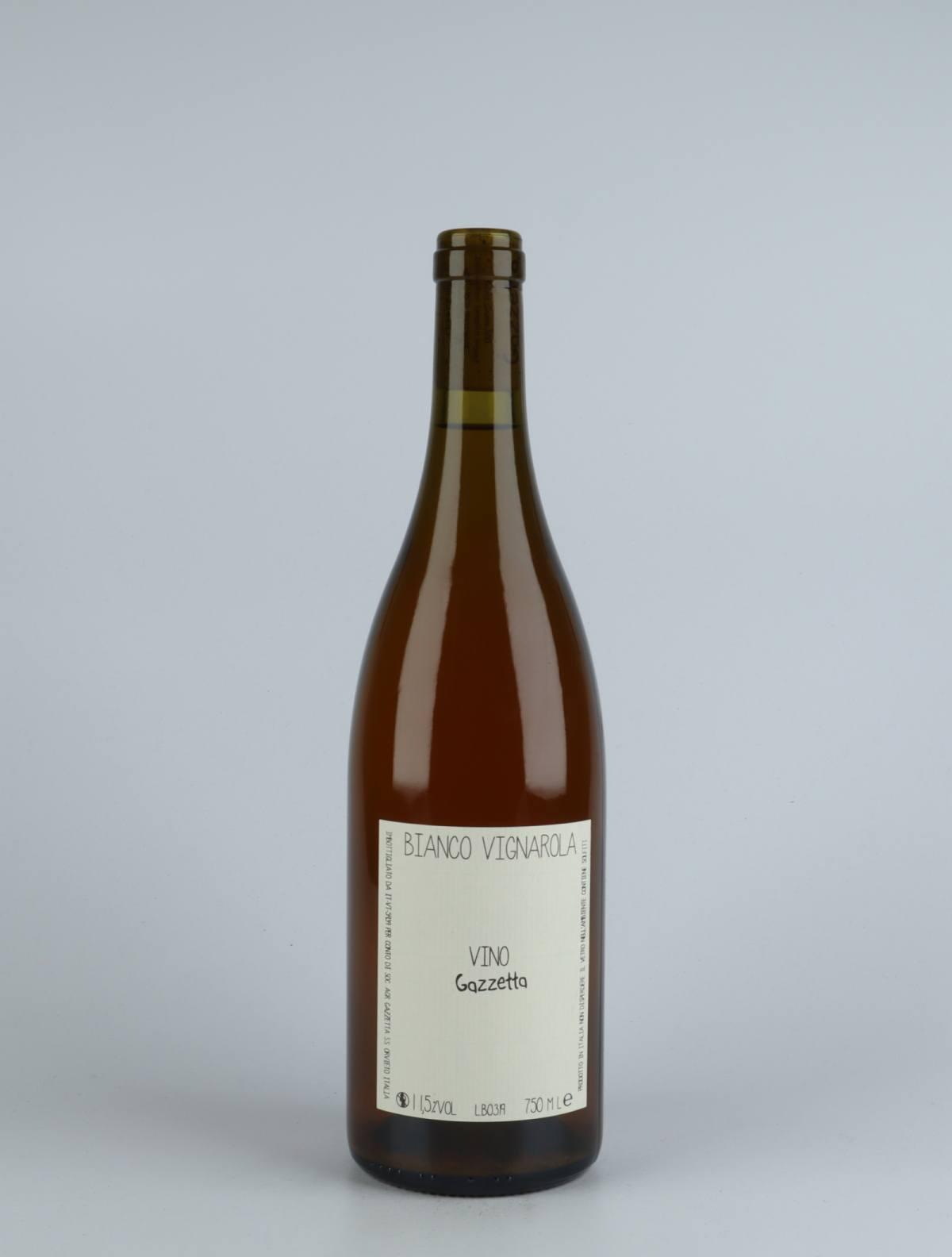 Vino Bianco Vignarola