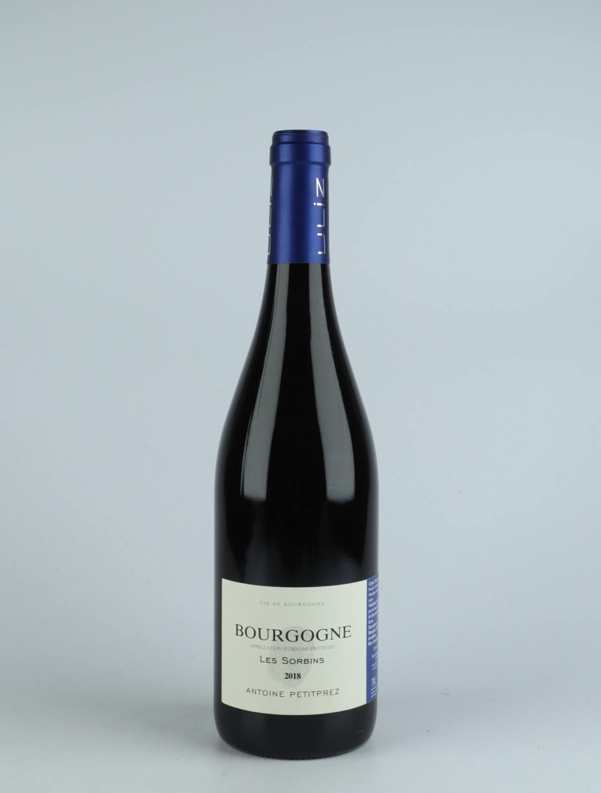 Bourgogne Rouge - Les Sorbins